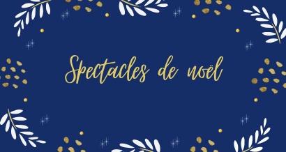 Spectacles à découvrir en famille, en attendant Noël