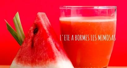 Festivités de l'été à Bormes les Mimosas