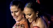 Où faire du flamenco à Marseille ? Le centre Solea, une belle institution.