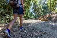 La Seyne sur Mer : Le parcours santé de la forêt de Janas ouvre de nouveau demain