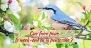 Notre sélection de sorties pour le week-end de la Pentecôte en Provence