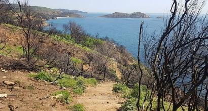 Il y a un an un incendie ravageait les Caps Lardier et Taillat
