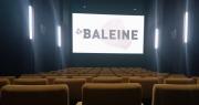 La Baleine, un nouveau cinéma ouvre ses portes au Cours Julien