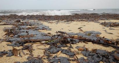 Les plages de Ramatuelle, Saint Tropez et Sainte Maxime souillées par des galettes de pétrole