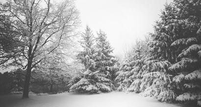 Alpes du Sud: les premières chutes de neige annoncées pour ce weekend