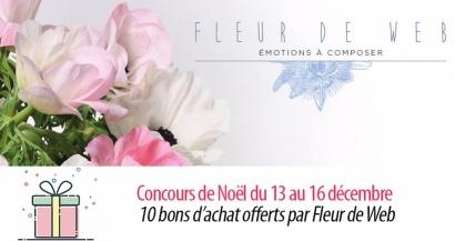 #7 Concours de Noel : 10 bons d'achat valables chez Fleur de Web