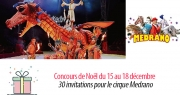 #8 Concours de Noël : 30 invitations pour voir le Cirque Medrano à Marseille