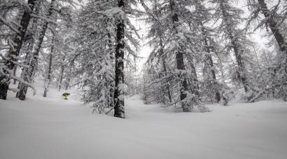 Alpes du Sud: La neige devrait faire son retour cette semaine