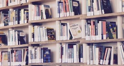 La bibliothèque Alcazar fermée à cause de la présence de punaises de lit