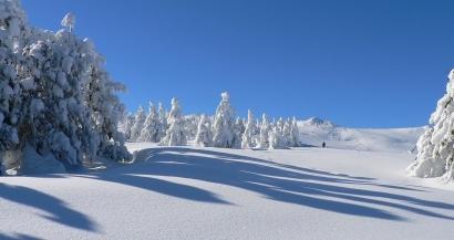 Jusqu'à 40 cms de neige dans les Alpes du Sud !