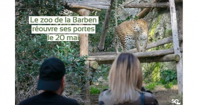 Le Zoo de la Barben rouvre ce mercredi 20 mai