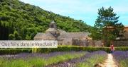 Que faire dans le Vaucluse? 10 lieux à visiter