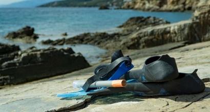 Etoiles de mer, poulpes... s'observent le temps d'une randonnée snorkeling à la Garde