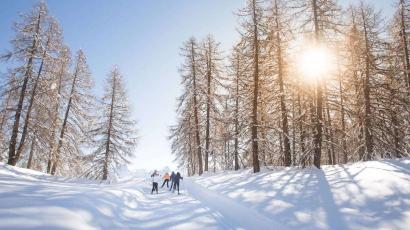 Les premières pistes de ski ouvertes dès ce weekend dans les Alpes du Sud