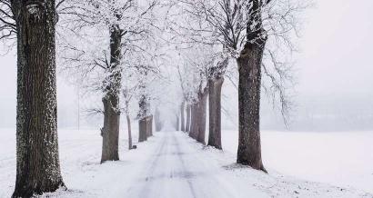 Des alternatives au ski alpin dans le Pays des Écrins (05) pour les vacances de Noël