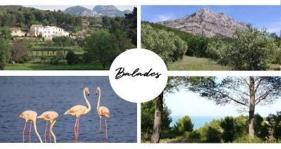 Bouches du Rhône: 5 balades pour profiter des beaux jours avant le confinement
