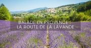 Balade en Provence, la route de la lavande