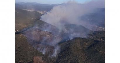 90ha de forêt partent en fumée dans un incendie à Auriol attisé par le mistral