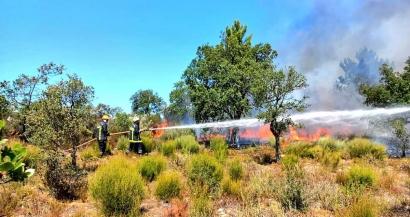 8000ha parcourus, 7100 brûlés par l'incendie des Maures, le feu est fixé