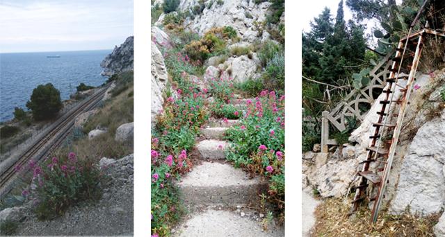 Randonnée   de l Estaque à la Pointe de Figuerolles - Marseille ... edc912bd93b