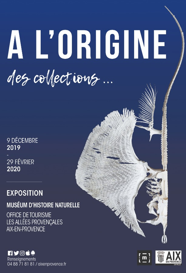 A L'ORIGINE DES COLLECTIONS...