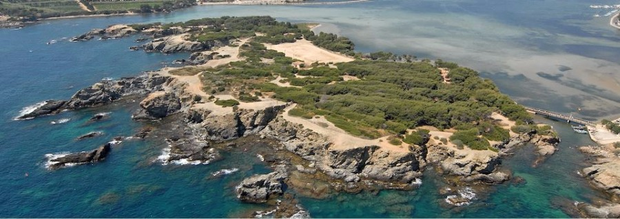 Ile du gaou six fours les plages frequence - Office du tourisme six fours les plages 83140 ...