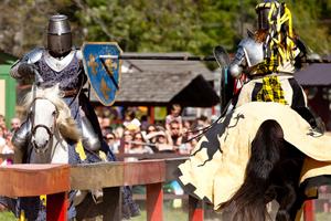 Les Fêtes Médiévales 2016 en région PACA