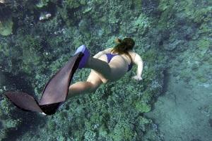 Randonnées snorkeling en Provence