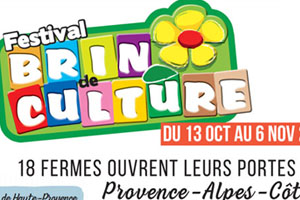 Festival Brin de Culture