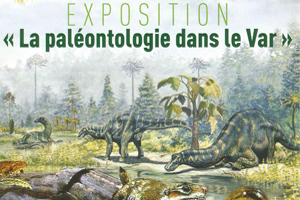 Exposition la paléontologie dans le Var