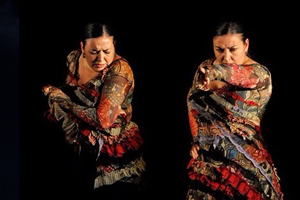 Festival Poc : Tablao Flamenco